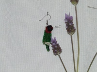 view of hummingbird1